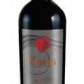 Lucas, um vinho Chileno que nasceu campeão! 1º LUGAR NO ENCONTRO DE VINHO OFF
